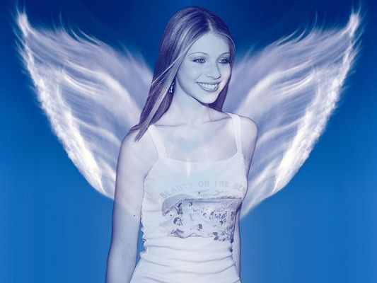 click to free download the wallpaper--TV & Movie Wallpaper, Michell Trachtenberg Smiling, White Wings, She is the Angel
