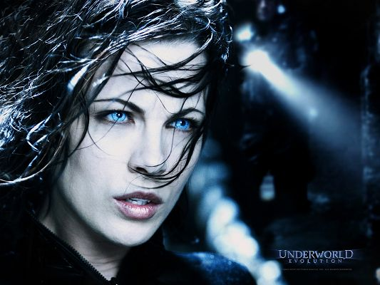 click to free download the wallpaper--TV & Movies Posts, Underworld Evolution, Wet Hair in a Mess, Blue Eyes, She is Nice-Looking