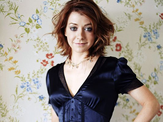Taking Part in Date Movie and CBS's How I Met Your Mother, Can be Quite Graceful in Her Typical Pose - HD Alyson Hannigan Wallpaper