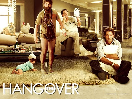 click to free download the wallpaper--The Hangover Movie Post in 1600x1200 Pixel, All Men Are Not Perfect, They Are a Little Surprised, a Lively Scene - TV & Movies Post