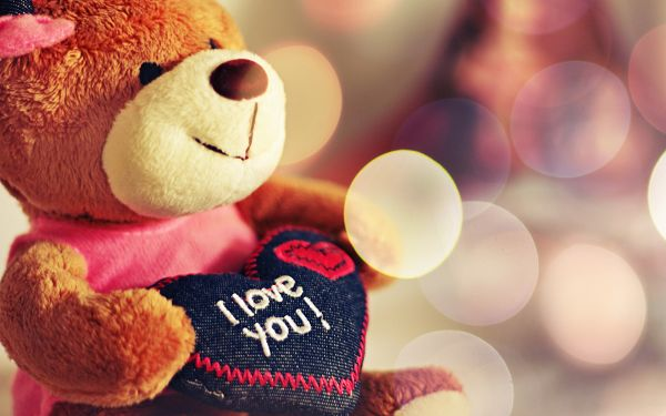 The Romantic Bear, Sure She is Lucky and Has Found Her Mr.Right, Do You Love Her? - Cozy and Romantic Scene Wallpaper