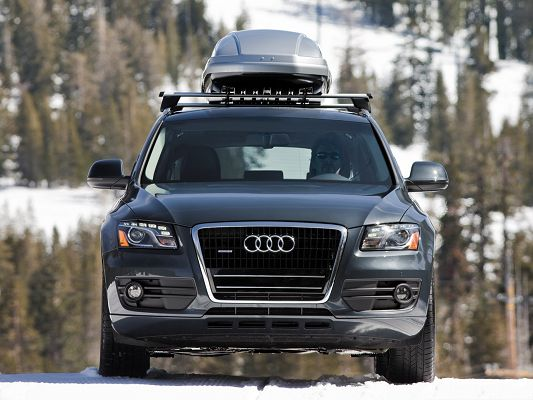 click to free download the wallpaper--Top Car Images, Audi Q5 Quattro Car in the White Snowy World, Deeply Impressive