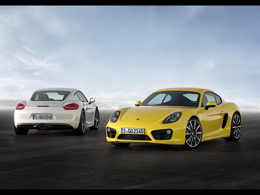 click to free download the wallpaper--Top Car Post of Porsche Cayman, Two Cars in Stop, Easily Tell That They Are Impressive