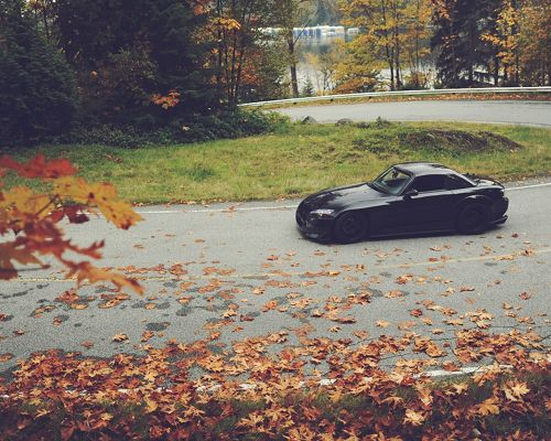click to free download the wallpaper--Top Cars Post, Black Honda S2000 Turning a Corner, Fallen Leaves, Great Car and Nature Scenery