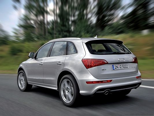 click to free download the wallpaper--Top Cars Wallpaper, Audi Q5 Quattro S Line Car in Fast Speed, Tall Green Trees
