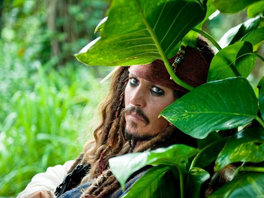 click to free download the wallpaper--Top Movie Images, Pirates Of The Caribbean, Johnny Depp Leaning on Green Plants