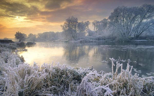 Trees Alongside the River Are Full of Snow, Coldness is Easy to Imagine, Yet the Sun is Coming Out, There is Anticipation - HD Natural Scenery Wallpaper