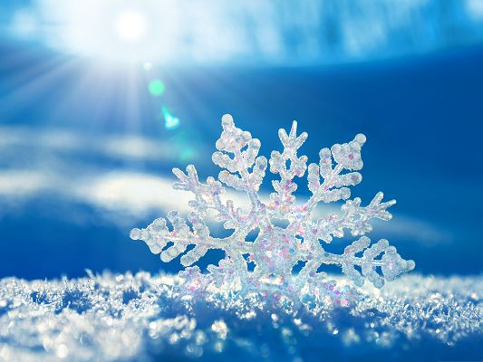 click to free download the wallpaper--Wallpaper Free Computer, White Snowflake on Blue Background, Welcome to the Fresh World