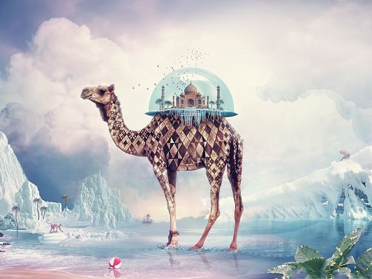 click to free download the wallpaper--Wallpaper for Computer Background, Mosque on Camel's Back, Take It Far Away