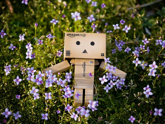 click to free download the wallpaper--Wallpaper for Computer, Danbo Among Spring Blooming Flowers