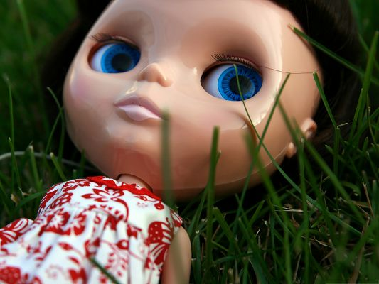 click to free download the wallpaper--Wallpaper for Computer Desktops, Ramona Doll Lying Among Green Grass, Wish You Sound Sleep