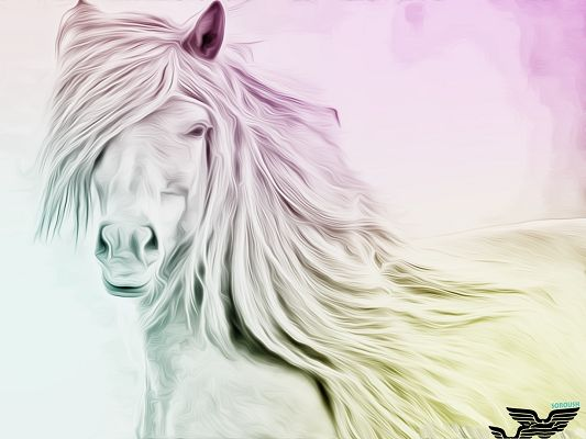 click to free download the wallpaper--Wallpaper for Computer, Nice Horse Drawing, Look Great on Desktop