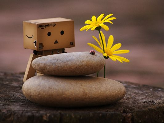 click to free download the wallpaper--Wallpaper for the Computer, Danbo And Zen Pebbles, Who Are You, Can We Have Fun Together?