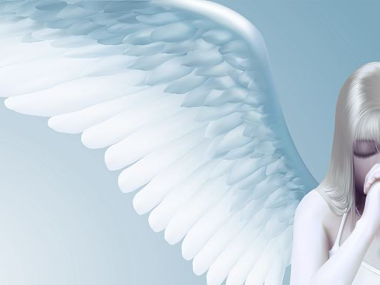 click to free download the wallpaper--Wallpaper for the Computer, Praying Angel, Pure and Sacred