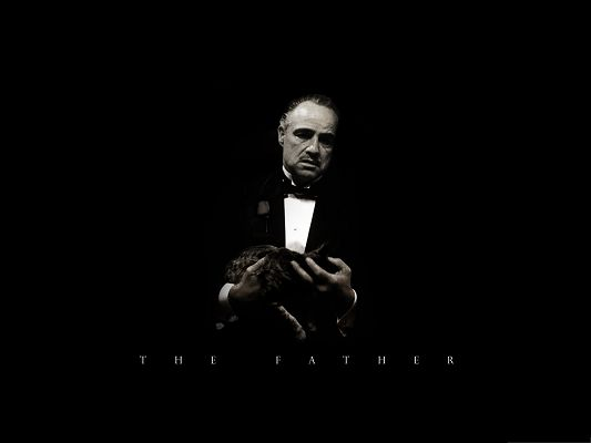 click to free download the wallpaper--Wallpaper for the Computer, The Godfather, a Cat in His Hand