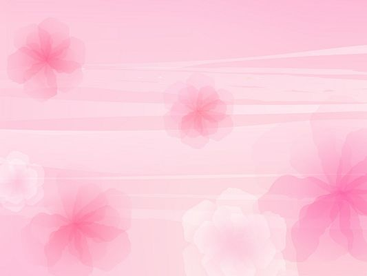 click to free download the wallpaper--Wallpapers for Computer Free, Pink Flowers Background, Beautiful and Impressive