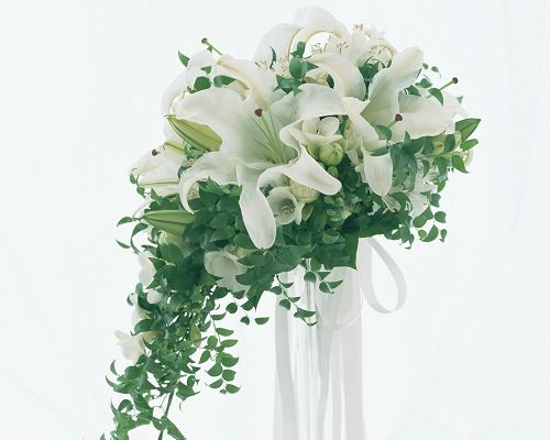 click to free download the wallpaper--Wedding Flowers Image, White Lilies, Pure and Impressive Flower