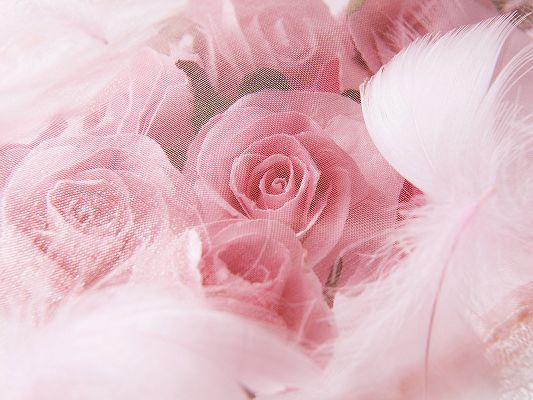 click to free download the wallpaper--Wedding Photography, Pink Wedding Flowers, Cozy and Romantic Scene