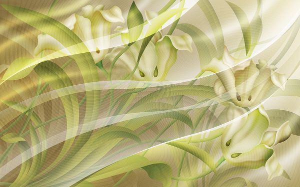 click to free download the wallpaper---White Flowers in Full Bloom, Crossed Lines and Green Leaves Serve as Decoration, Like a Scene in Dream - Hand-Drawn Flowers Wallpaper
