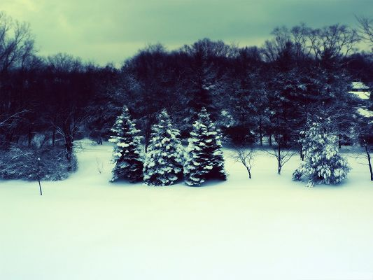 click to free download the wallpaper--Winter Landscape Image, Thick Snow is Everywhere, the White and Pure World