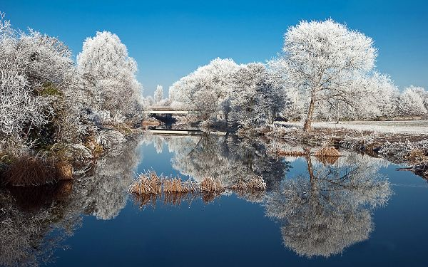 Winter and Snow Shall Prepare Everything a White Suit, They Are More Beautiful and Attractive - Natural Scenery Wallpaper