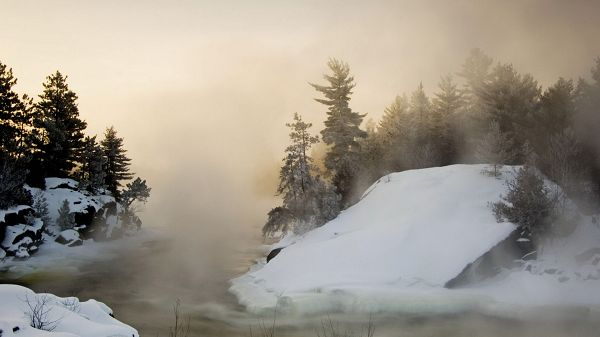 beautiful nature wallpaper - Shaking Trees, Snow is Flying, the Scene is Misty and Unclear