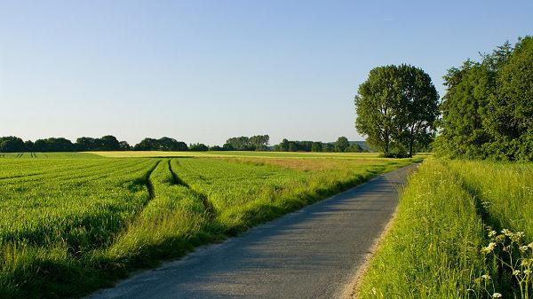 beautiful pictures of nature - All Well-Organized Fields, Narrow and Clean Road Passing by