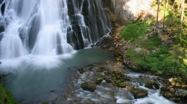 free nature photos - A White and Large Waterfall, Natural Plants Beneath Are Never Thirsty