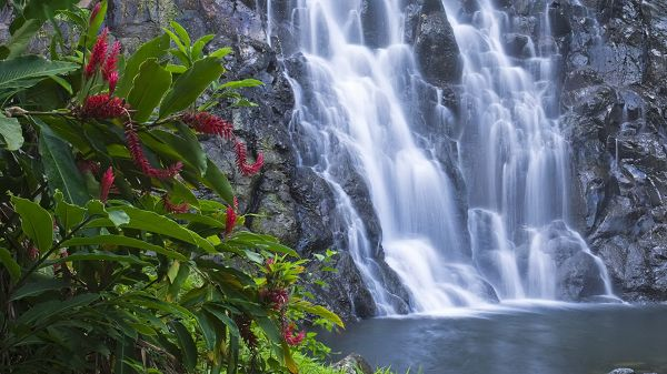 click to free download the wallpaper--free nature photos - Waterfalls Are Gathering into the Lake, Water is Fresh and Clean, Like a Fairyland