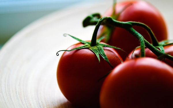 free wallpaer of tomatoes ,click to download