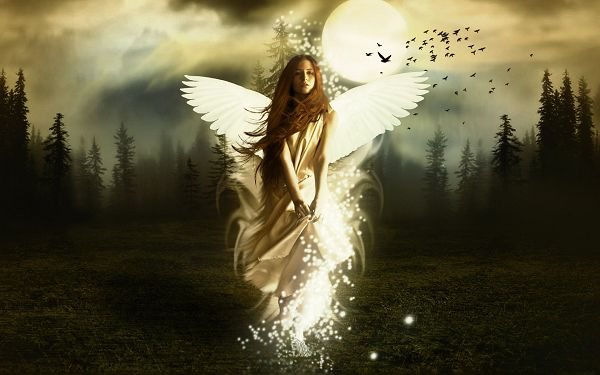 free wallpaper of a angel girl  in forest ,click to download