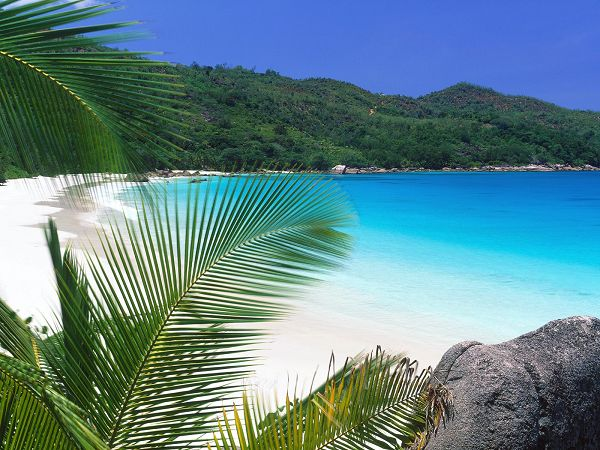 free wallpaper of beach: Retreat Beach in Tropic ,click to download