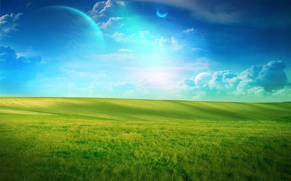 Free Wallpaper Of Grassland