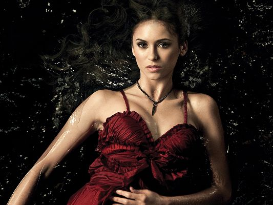 free wallpaper of star-Nina Dobrev,click to download