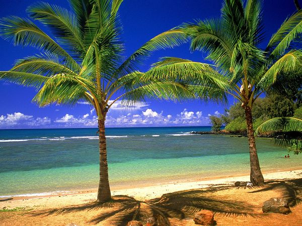 free wallppaer of beautiful scenery in Tropical Lagoon ,click to download