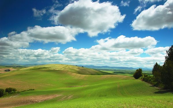 great scenery wallpaper of The Hulunbeir Grassland ,click to download