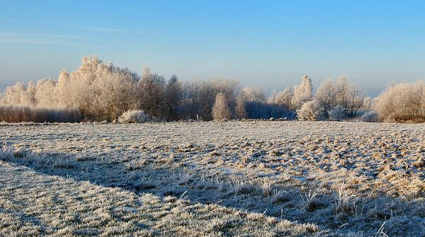 images of nature - The Incredibly Blue and Cloudless Sky, Snow-Covered Field