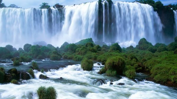 click to free download the wallpaper--landscape photos - Wide Waterfall, Green and Prosperous Plants All Over the Surface