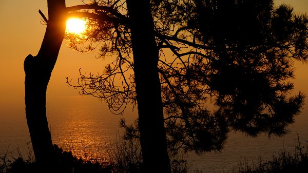 natural scene photos - The Rising Sun Above the Golden and Peaceful Sea, Shall Look Good