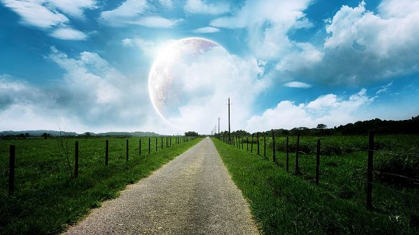 click to free download the wallpaper--photo of nature - Green Plants Divided by a Narrow White Road, the Rising Moon