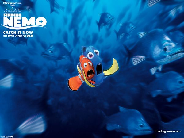Pretty Wallpaper Of The Movie Finding Nemo