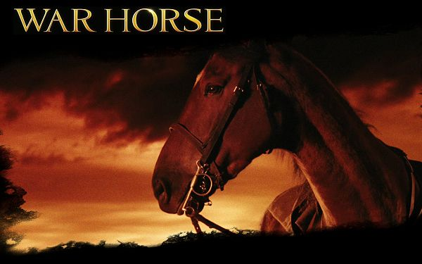 The Latest Free Wallpaper About Movie War Horse