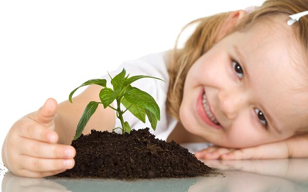 wallpaper of baby - a lovely girl and a small plant,click to download