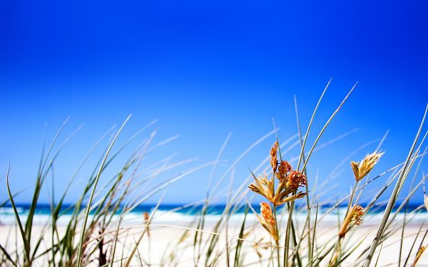 Wallpaper Of Beach:  The Clear Sky In Fine Days