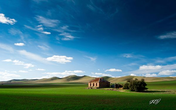 Wallpaper Of Natural Scenery: Wonderful Scenery Of The Hulunbeir Grassland
