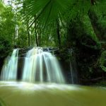 2015 HD Eye Protection Wallpaper(12): waterfall in forest