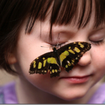 Intimate Touch with Butterfly for a cute Girl