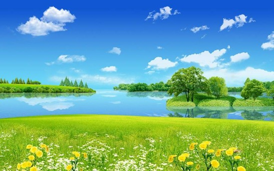 2017-eye-protection-wallpaper-white-cloud-lake-grass-02-thumb[2]