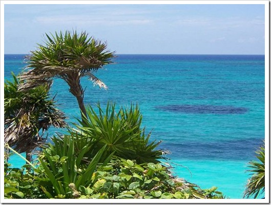 Amazing-Pic-of-Nature-Landscape-the-Incredibly-Blue-Sea-Green-Plants-Alongside-Combine-Great-Scene-[1]