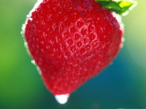 Free Fruits Wallpaper, Sweet Summer Strawberry, Fresh and Tasty